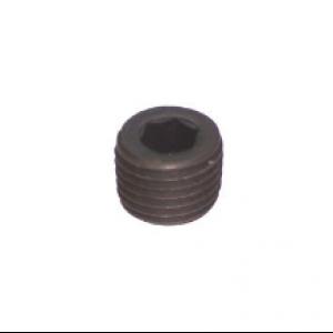 038-0119 - Pipe Plug