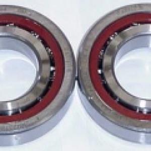 1422 - Spindle Bearing Set